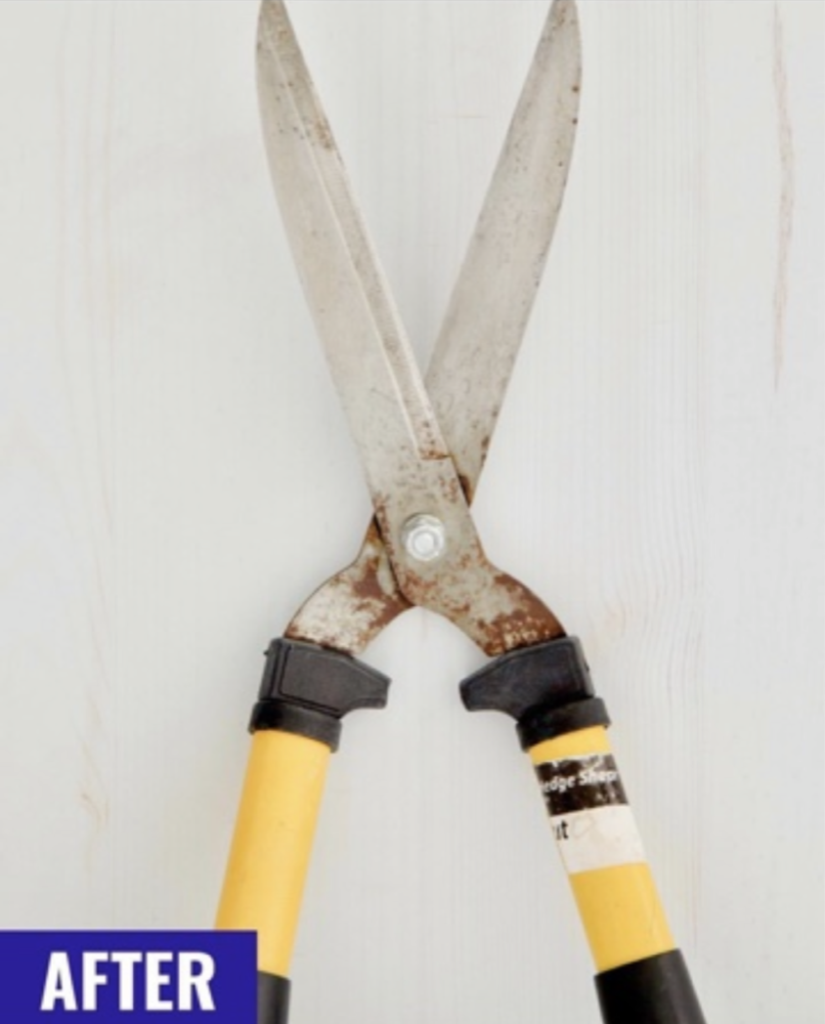 Cleaning Gardening Tools - One Good Thing by Jillee - After Pic