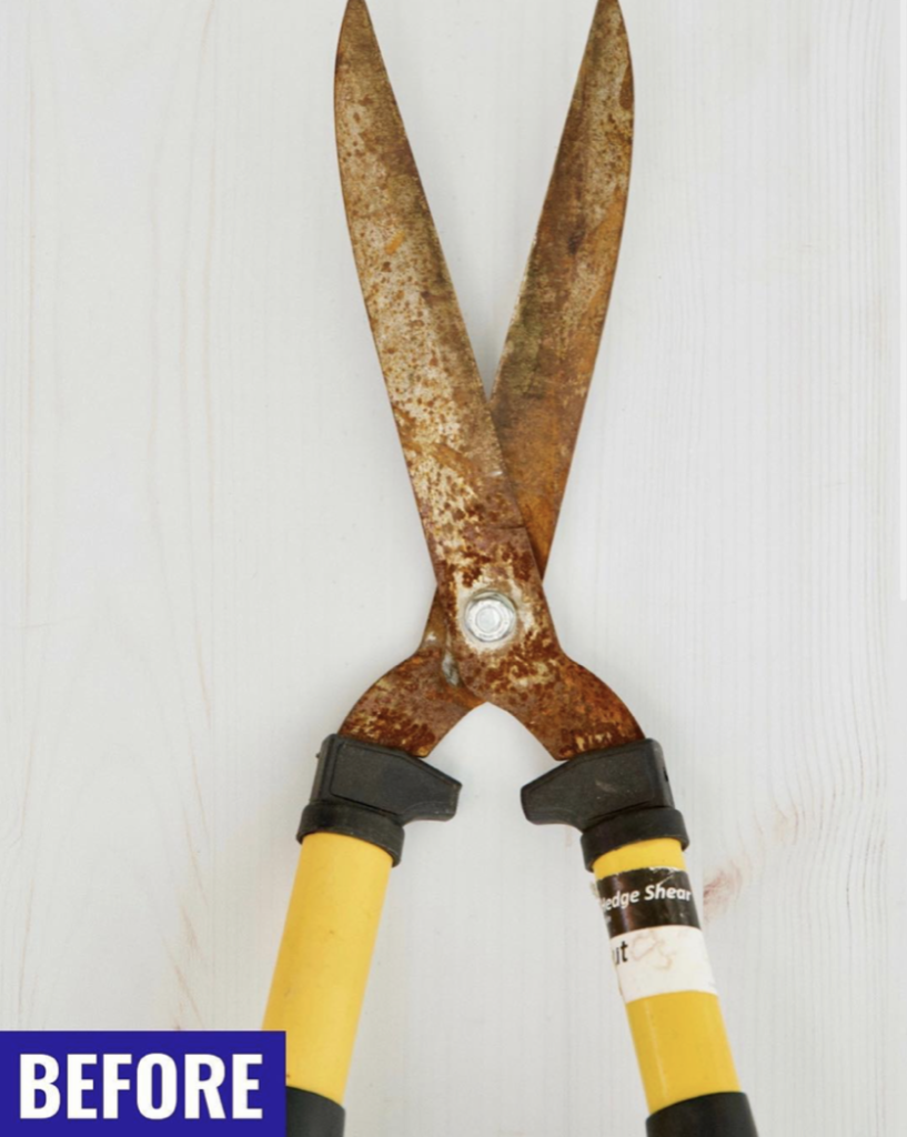 Cleaning Gardening Tools - One Good Thing by Jillee - Before Pic